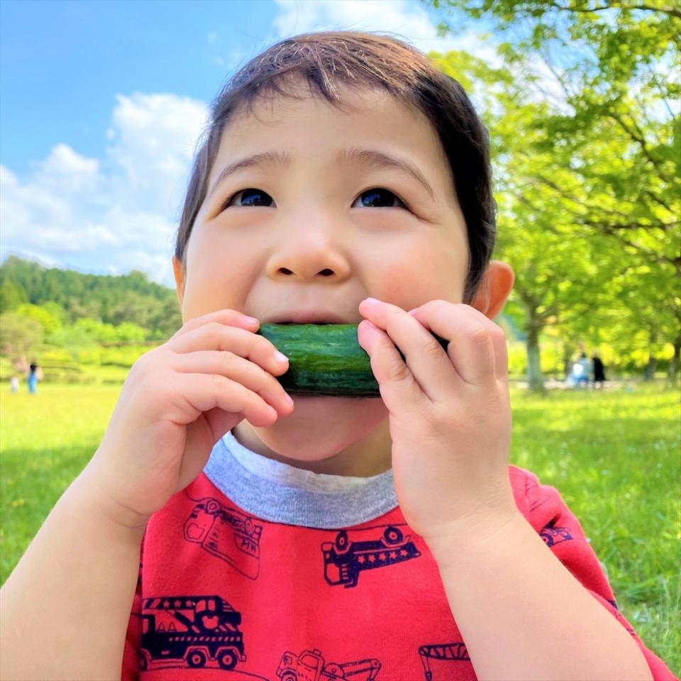 https://www.coco-cari-egg.jp/common/uimg/野菜が苦手な子どもにはどう声をかける?実習でも使える言葉かけとは