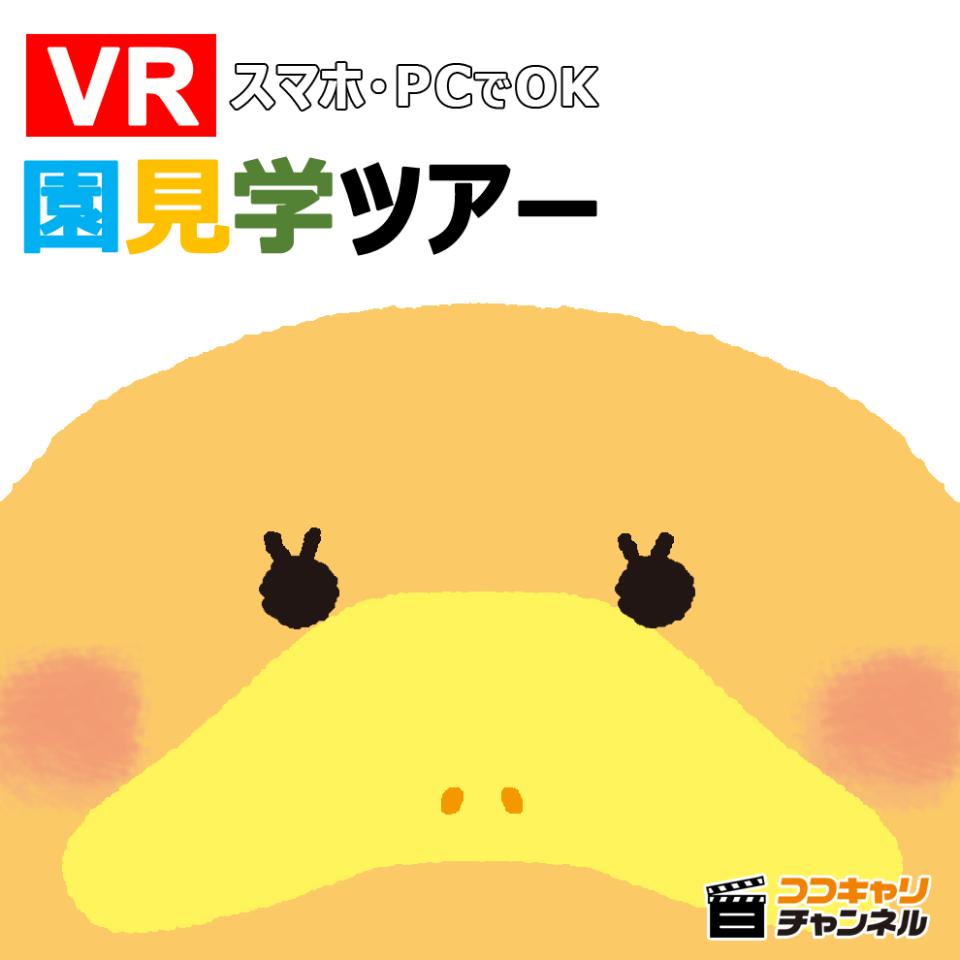 https://www.coco-cari-egg.jp/common/uimg/スマホでおうちで園の雰囲気が分かる?! 360°の園見学が登場