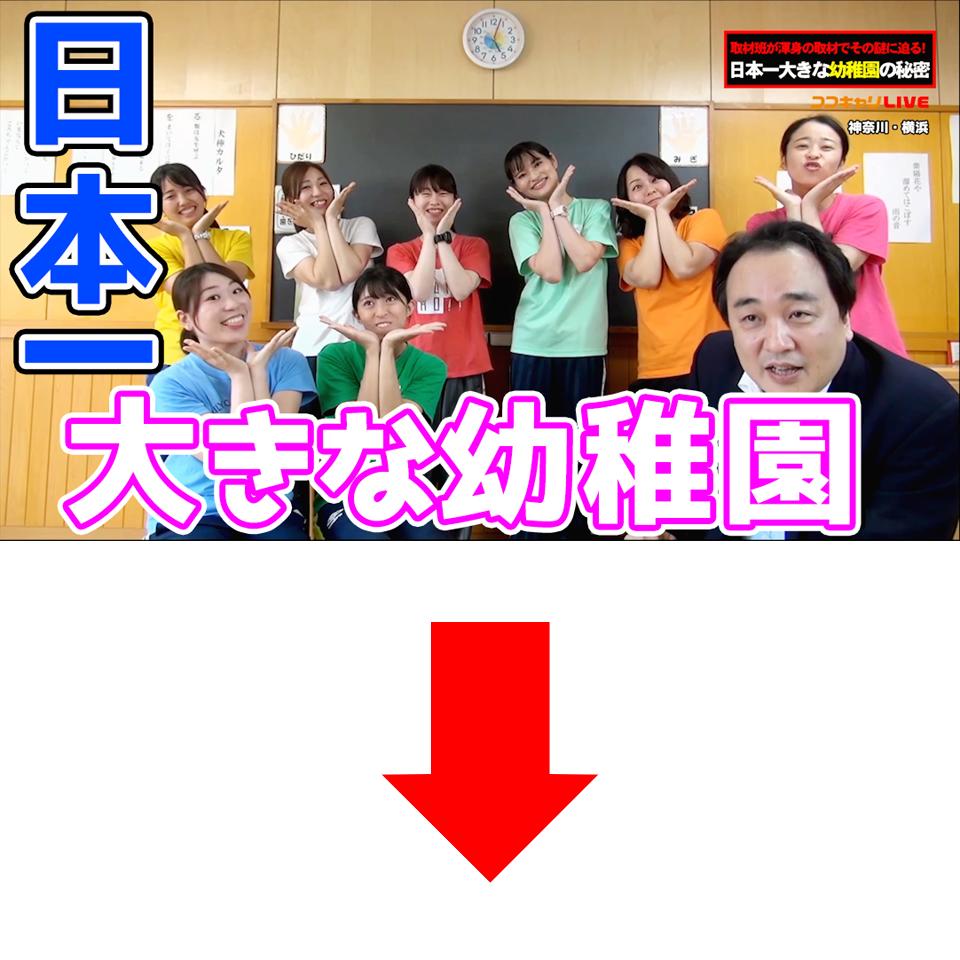 日本一大きな幼稚園の秘密に迫る!【湘南やまゆり幼稚園】