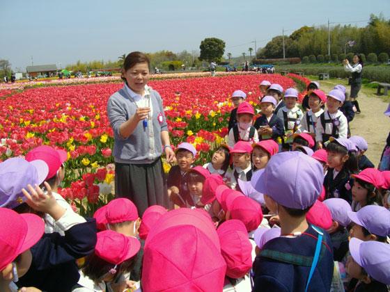 清泉学園 ひばり幼稚園