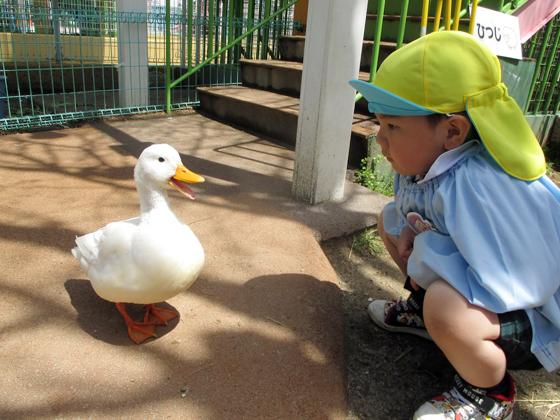 美鳥幼稚園