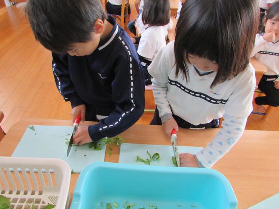 加茂川保育園