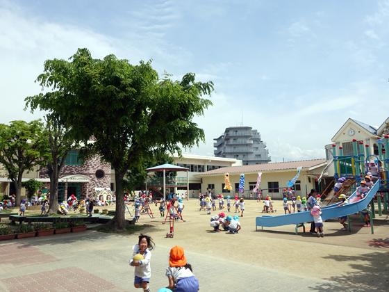 学校法人 葵学園